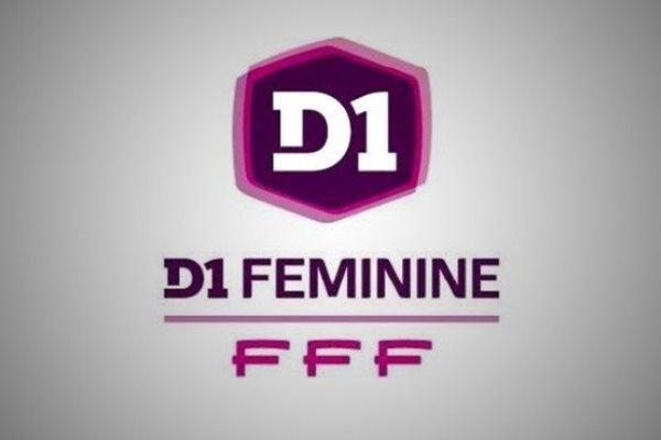 (logo fff)