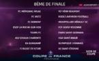 Coupe de France - Huitièmes de finale : deux chocs entre D1 : METZ - RODEZ et GUINGAMP - LYON