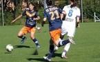 Schelin avec le 8 et De Revière avec le 21 (photo foot-herault)