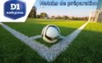Matchs de préparation : LE HAVRE - FLEURY : 0-0, ORLEANS - ISSY : 2-5