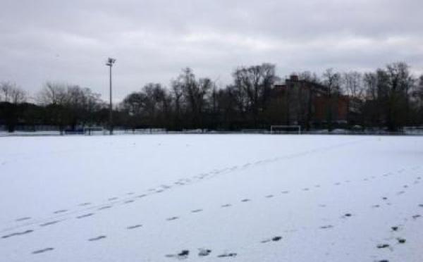 U19 - Groupe B - TOULOUSE - MONTPELLIER reporté
